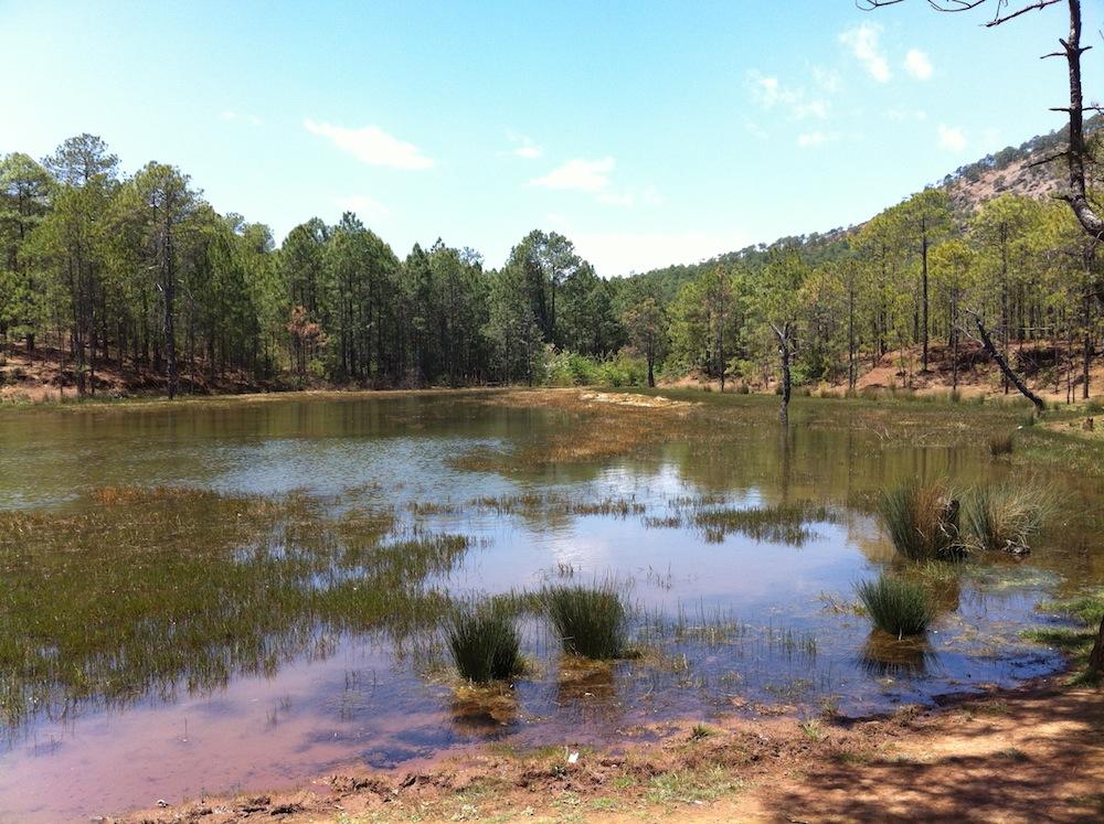 A small mountain lake