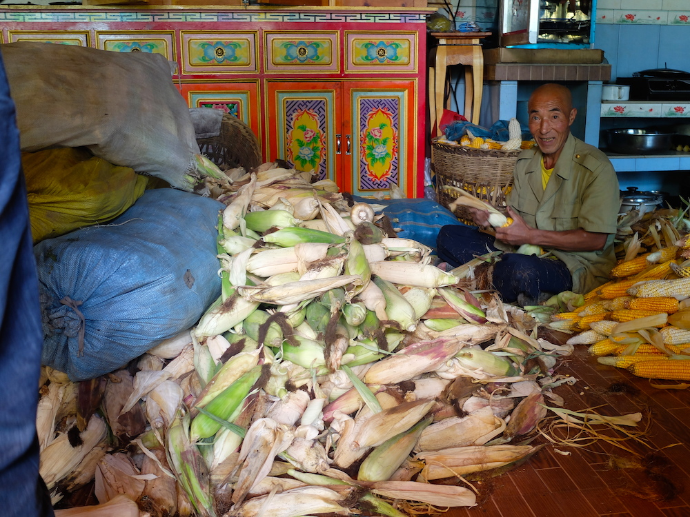 TKNAME, shucking freshly harvested corn